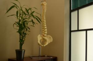 Chiropractor Woodbridge, Chiropractor Vaughan, Chiropractor, Chiropractic
